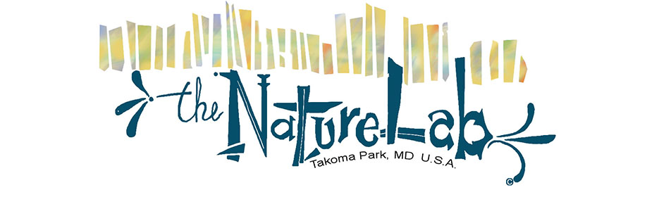 the NatureLab - Takoma Park