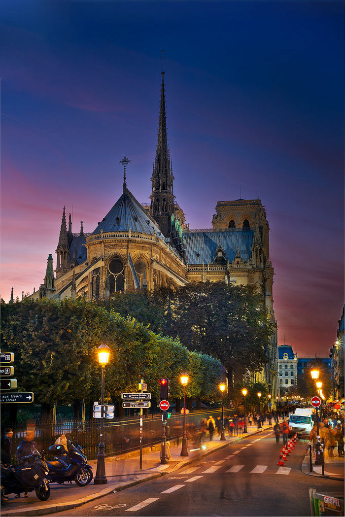 back of notre dame <br> 40% off and 100% profits benefit Notre-Dame Fire Restoration Fund