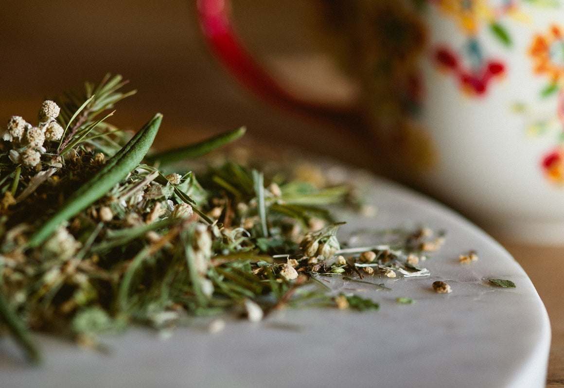 Cold and Flu Tisane a foraged botanical brew