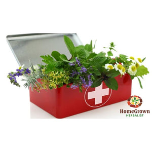 Herbal First Aid - Audio File - Homegrown Herbalist