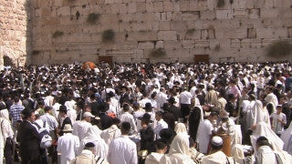 JJ_029 - Jewish sites in Jerusalem: Young Jewish worshiper with Tefilin at the Western Wall
