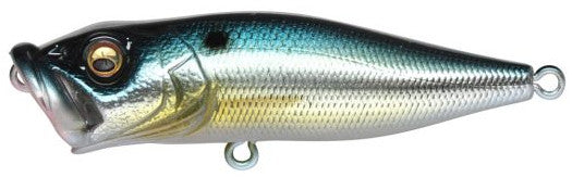 USA M Threadfin Shad
