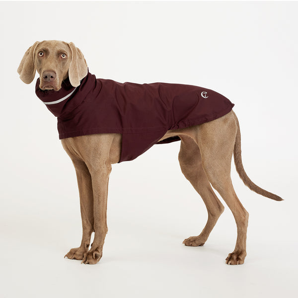Cloud7 London Dog Waterproof Rain Coat with Belly Protector in Bordeaux