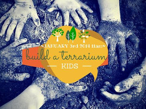 Build a Terrarium! Kids Workshop