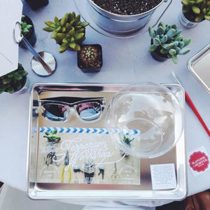 Terrarium Workshop & Cocktails with Love Ding