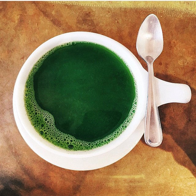 Study Suggests Matcha Encourages Cancer Cell Apoptosis - World Tea News