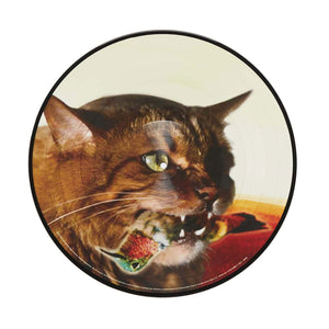 "'The Meowstro Sings: Keep It Together' 12"" Vinyl Picture Disc"