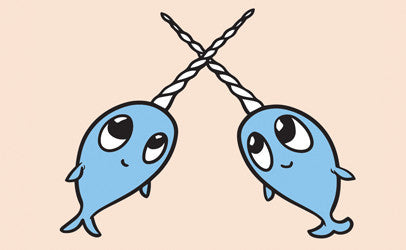 Narwhal Friends