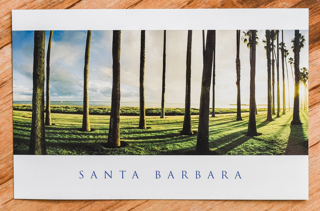 East Beach Palms Postcard Postcards - Lumino Press, The Santa Barbara Company