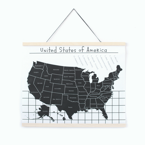 Map of the USA Canvas Wall Hanging - Project Nursery