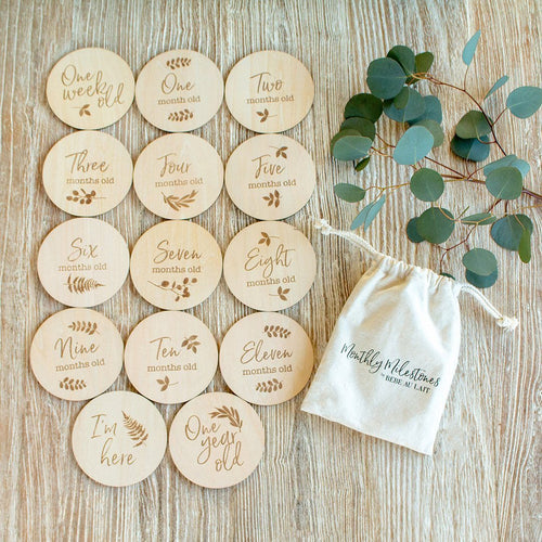 Monthly Milestone Moments Wooden Disc Set - Project Nursery