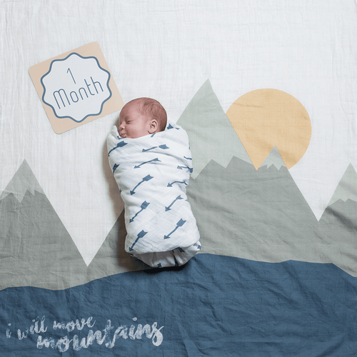 I Will Move Mountains Milestone Blanket & Card Set - Project Nursery
