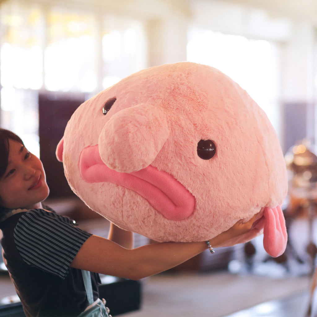 Colossal Blobfish