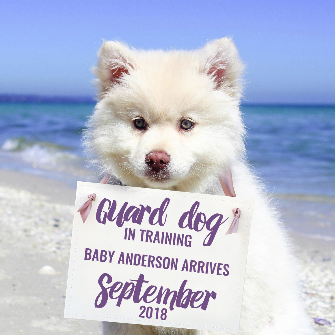 Guard Dog In Training Sign for New Baby Pregnancy