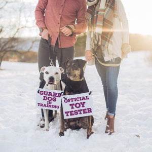 Dog pregnancy announcement