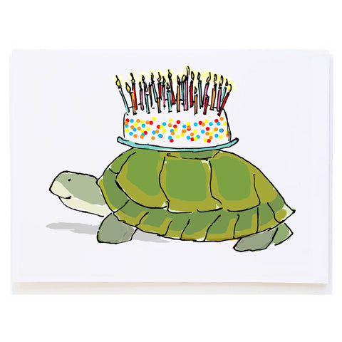 Turtle with Cake