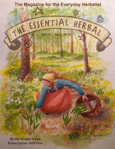 March April 2019 Essential Herbal - The Essential Herbal