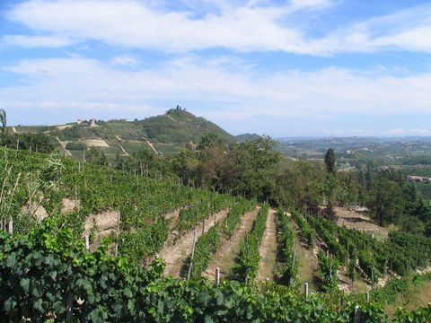 Around the World in Wine - Southern Italy; Thursday March 21, 6-9pm