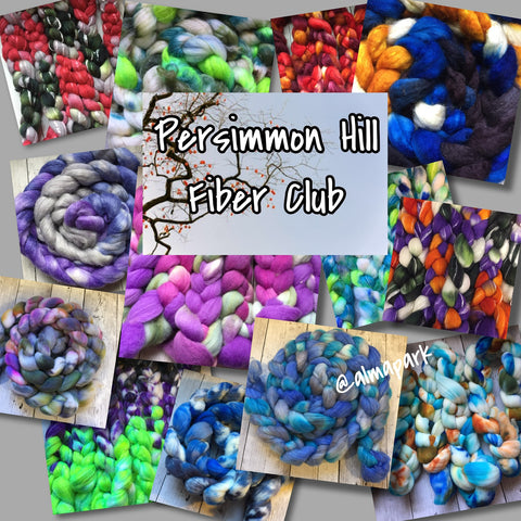 Persimmon Hill FIBER Club by Alma Park