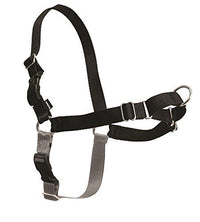 Easy Walk Harness