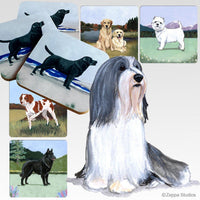 Bearded Collie Scenic Coaster