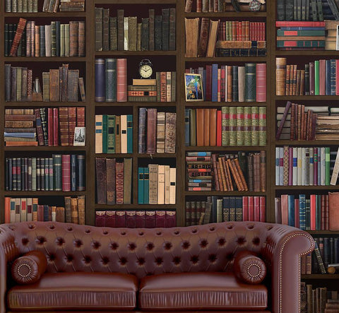 Bookcase Self Adhesive Wall Mural - Oakdene Designs - 1