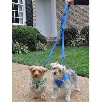 Six Way Multi-Function European Dog Leash - Leashes - BeauJax Boutique
