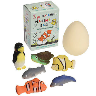 Make Your Own Marine Animal - Oh Happy Fry  - 3