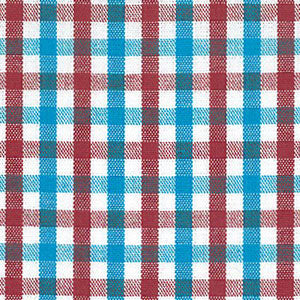 Turquoise and Red Check