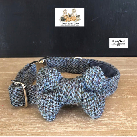 Harris Tweed Blue Cairn Dog collar and bowtie