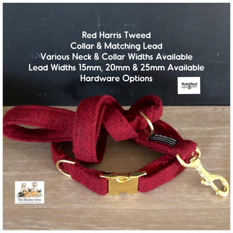 red harris tweed collar and lead