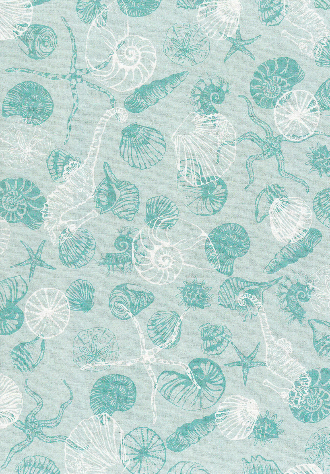 Sea Shell on Aqua Linen A4 Paper
