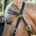 Ballynahinch Tack Braided Leather Bridle