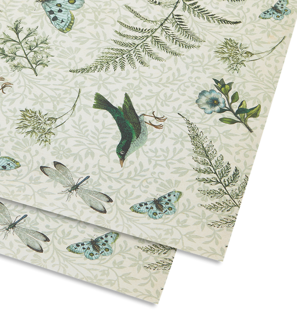 Ferns Gift Wrap - Lagom Design