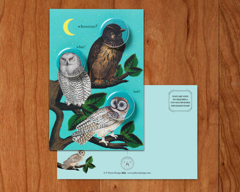 Owls • Postcards with Magnets