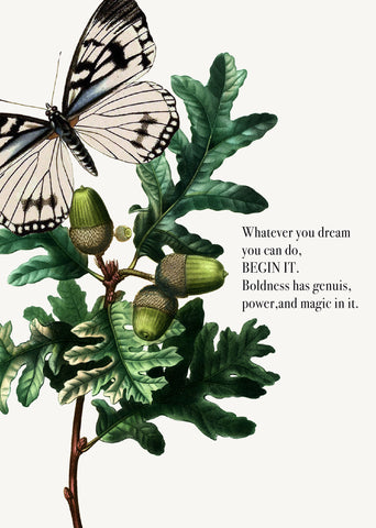 Whatever you dream you can do • 5x7 Greeting Card
