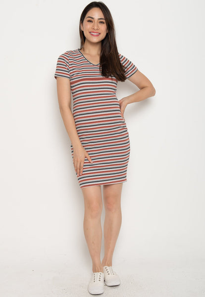 Paige Bodycon Nursing Dress in Rust