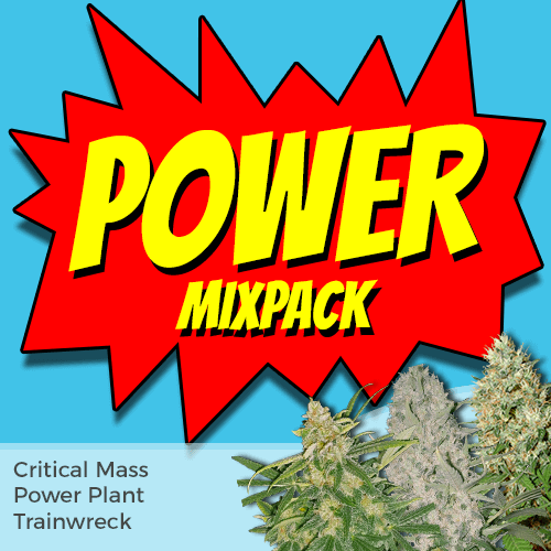 Power Mixpack