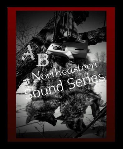 AB Northeastern Sound Series