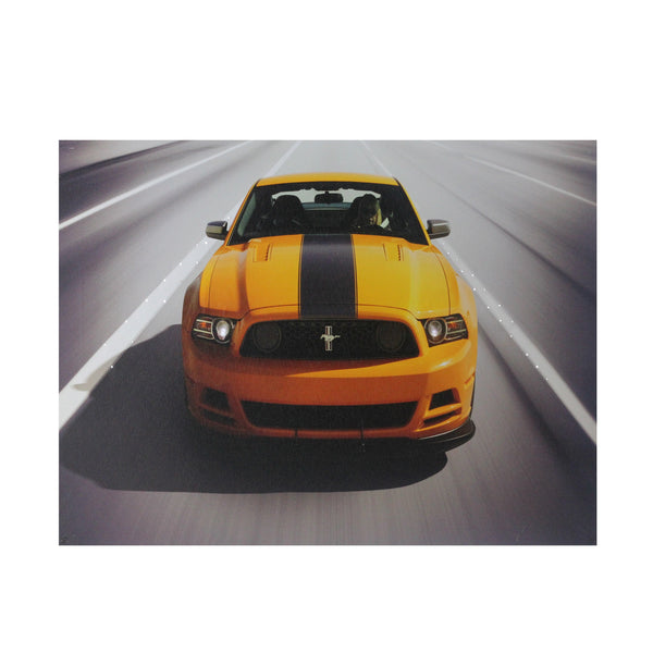 "Fiber Optic and LED Lighted 2013 Ford Mustang Boss 302 Canvas Wall Art 12"" x 15.75"""