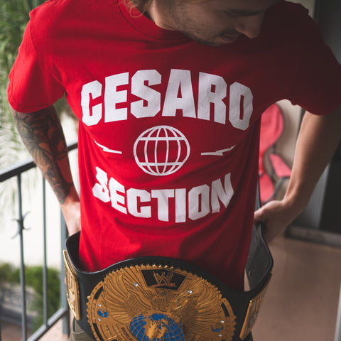 Cesaro Section