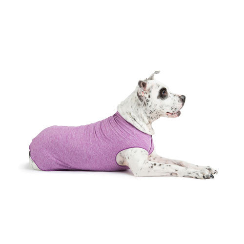 Gold Paw Series Sun Shield UV Protection Dog Tee Shirt Violet Heather