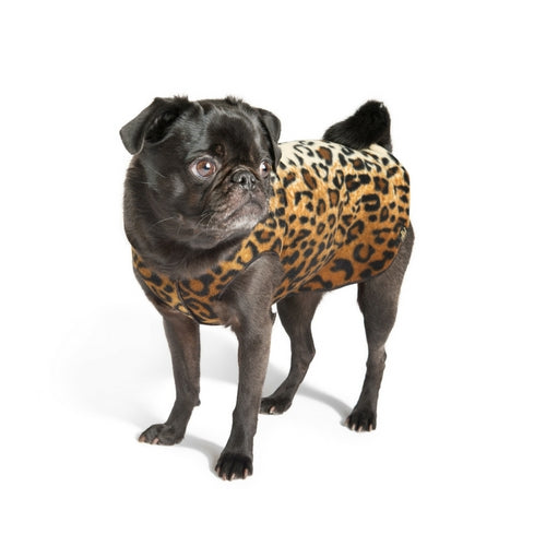 Gold Paw Series Stretch Fleece Pullover Dog Clothing — Leopard