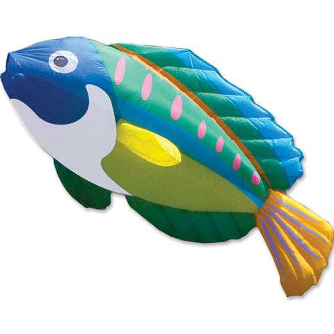 8 ft. Peacock Wrasse Kite