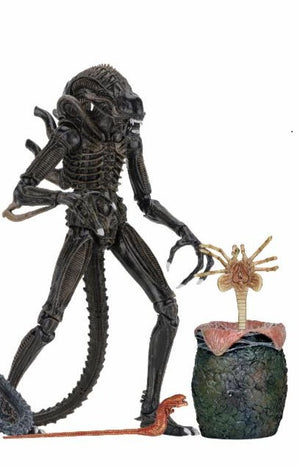 "Ultimate Aliens Warrior 1986 (Brown) - Aliens 7"" Scale Action Figure"