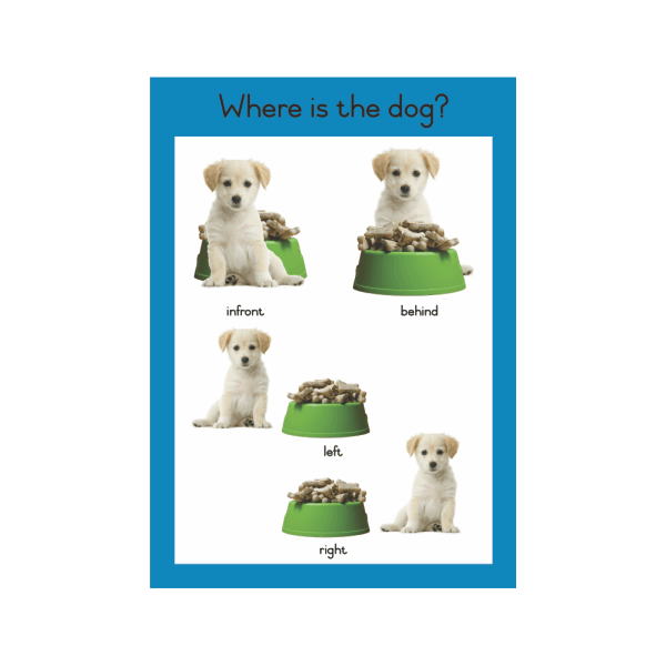 Wall Chart Where is the Dog? - A3