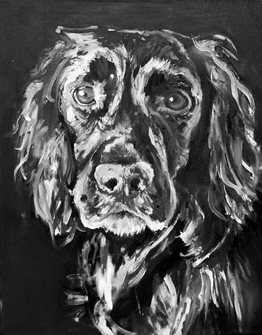 Working Cocker Spaniel Painting Print, black and white cocker Print ,dog portrait  English cocker spaniel gift idea Cocker spaniel art print - Dog portraits by Oscar Jetson - 1