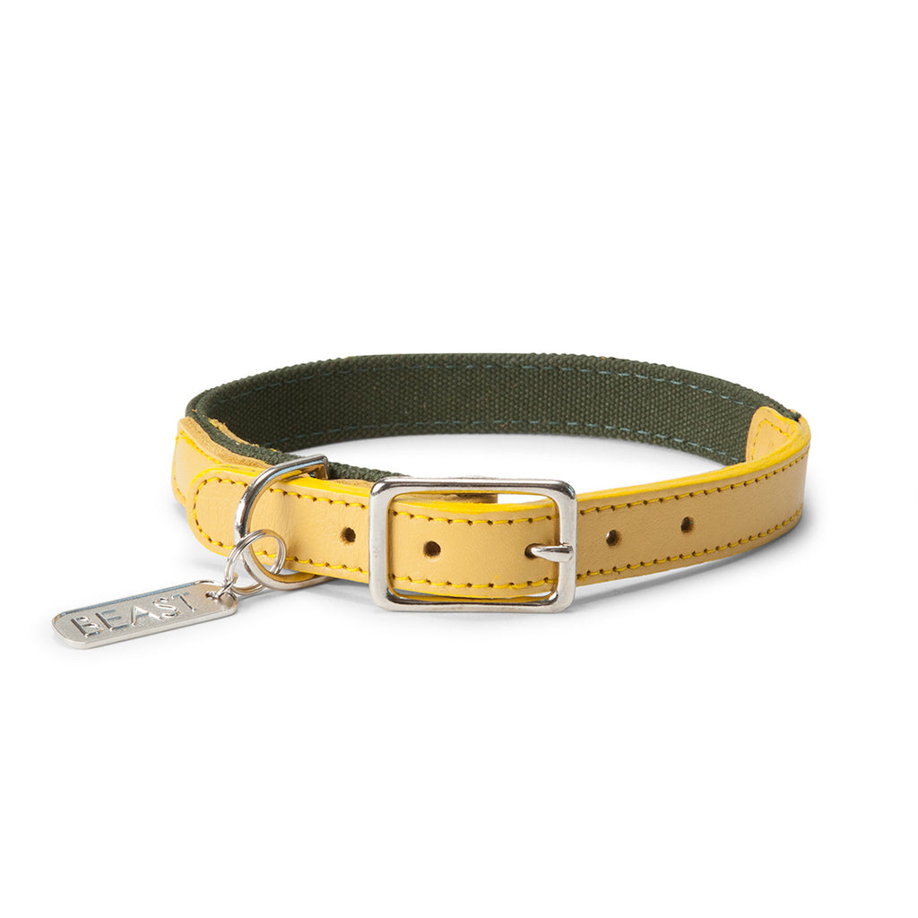 Leather Canvas Collar in Olive & Yellow