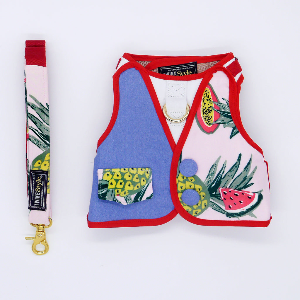 Tropical Fruits with Half Denim Print Harness + Leash Set - Twin In Style (Unisex) - The Pet's Couture