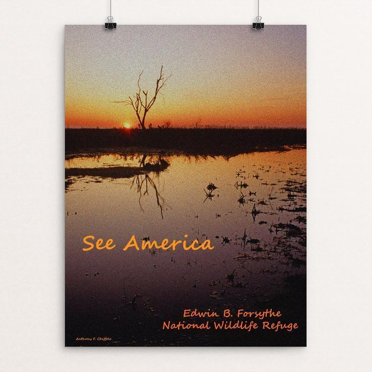 "Edwin B. Forsythe National Wildlife Refuge by Anthony Chiffolo 12"" by 16"" Print / Unframed Print See America"